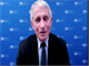 Fauci: US political divisions contributed to 500,000 COVID-19 deaths