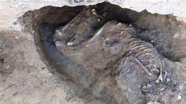 Skeleton proves 5,800 years of human history in south Iran