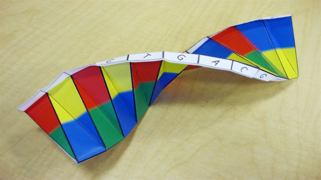Automating DNA origami opens door to new uses