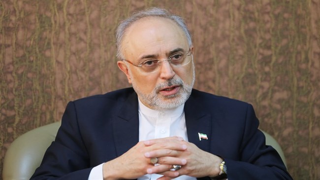 Nuclear chief: Iran can resume 20% enrichment in five days if necessary