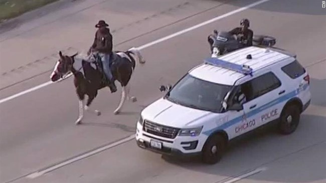 Man known as 'Dreadhead Cowboy' arrested for riding his horse on a Chicago highway