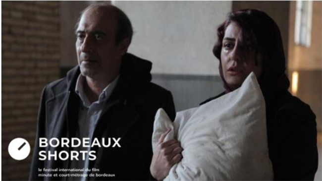 Iran's 'Bedside' steals the show at French festival